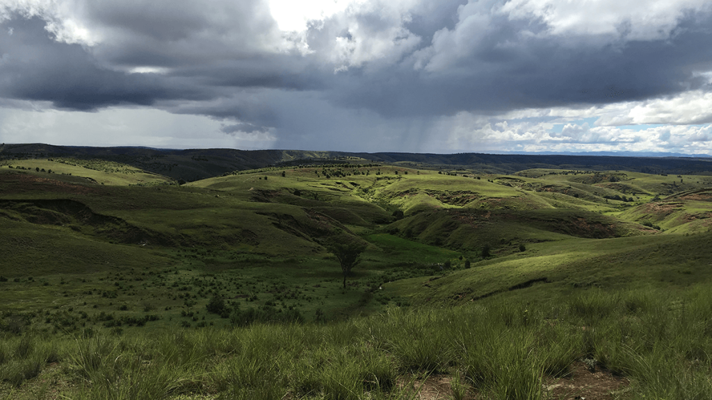 Highlands of Madagascar where Centella grows in valleys occupied by rice fields